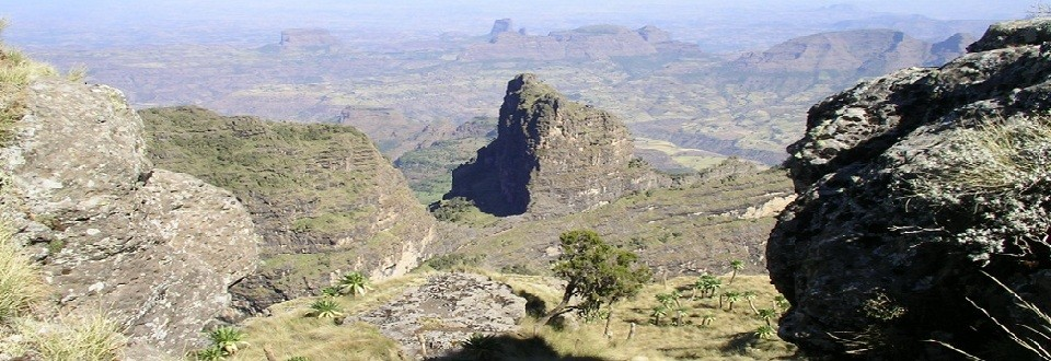 simien new edited